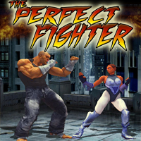 play the perfect fighter